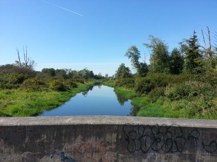 Burnaby Lake photo