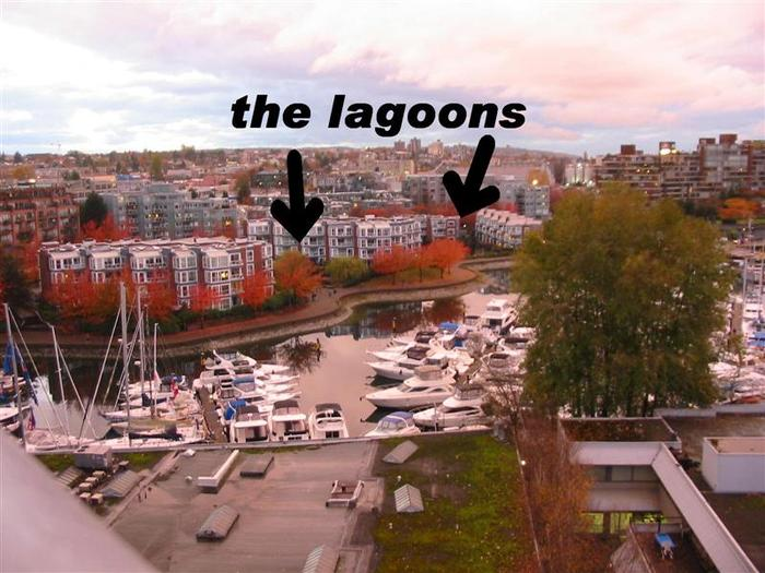 The Lagoons photo