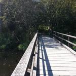 Burnaby Lake photo # 14