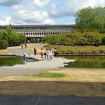 SFU Reflecting Pond photo # 12