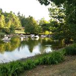 False Creek Duck Pond photo # 13
