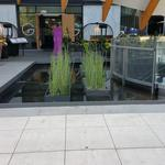 Telus Garden photo # 14