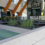 Telus Garden photo # 12