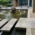 HKU-UBC House Rock Pond photo # 3
