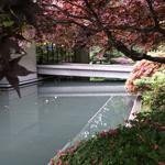 UBC Samurai Moat photo # 4