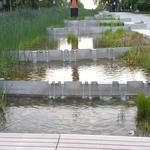UBC Ladder Marsh photo # 36
