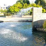Van Pelt's Fountain photo # 10