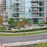 Bayshore Drive photo # 8