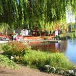 Granville Island Duck Pond photo # 16