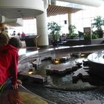 Pan Pacific Rim Map Pool photo # 17