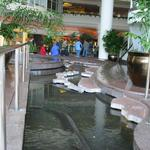 Pan Pacific Rim Map Pool photo # 18