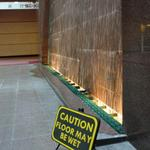Pan Pacific Water Wall photo # 6