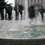 Vancouver Art Gallery photo # 12
