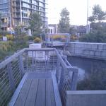 Olympic Village Duck Pond photo # 23