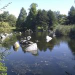 False Creek Duck Pond photo # 9